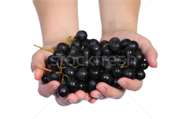 Grape vine in a hands Stock photo © DedMorozz