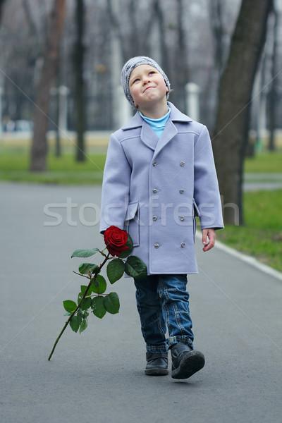 Little boy walking the park Stock photo © DedMorozz