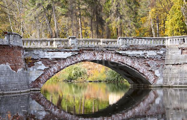 моста реке большой устаревший воды природы Сток-фото © DedMorozz