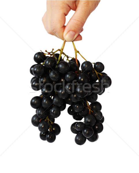 Grape vine in a nahd Stock photo © DedMorozz