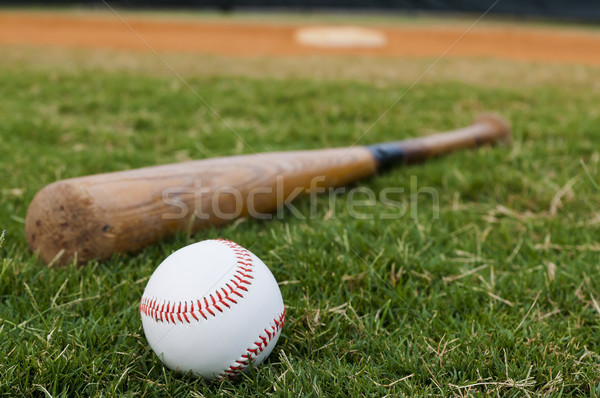 Baseball and Bat on Field Stock photo © dehooks