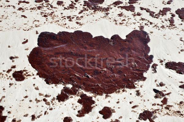 Oil Spill on Beach Stock photo © dehooks