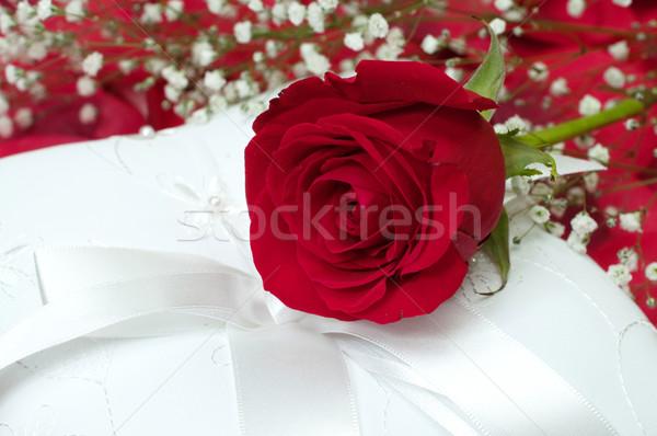 Red Rose on White Pillow Stock photo © dehooks