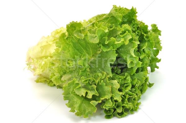 Green Leafy Lettuce Stock photo © dehooks