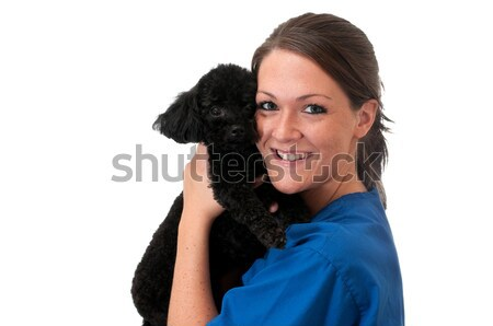 Veterinary Assistant with Pet Dog Isolated Stock photo © dehooks