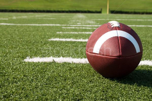 Amerykański boisko do piłki nożnej trawy sportu piłka nożna Zdjęcia stock © dehooks