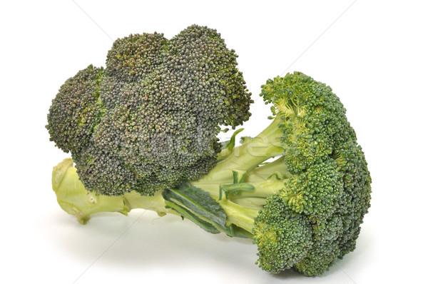 świeże brokuły odizolowany biały obiedzie warzyw Zdjęcia stock © dehooks
