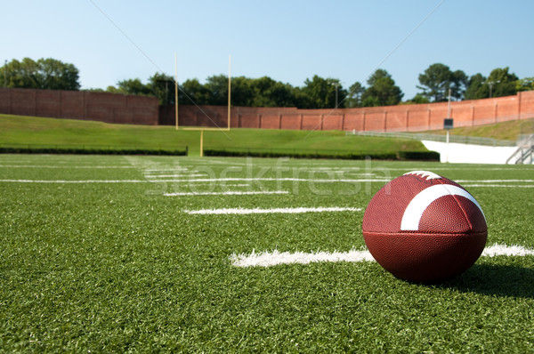 Closeup of American Football  on Field Stock photo © dehooks