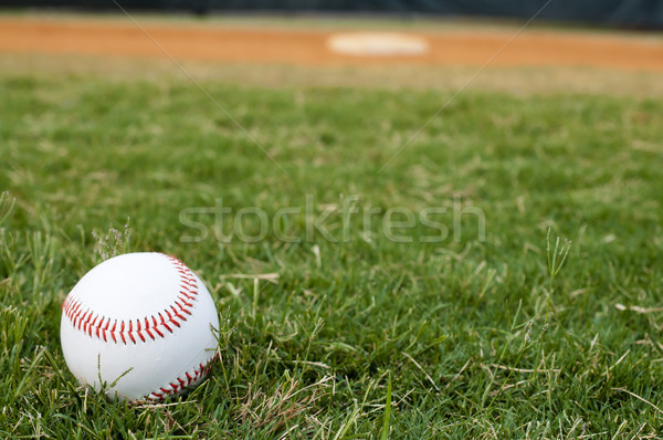 Baseball on Field Stock photo © dehooks