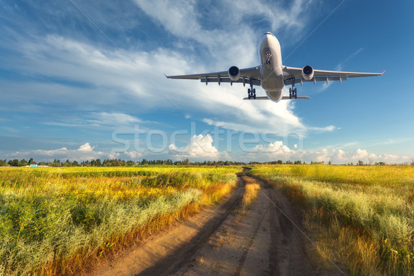 Landscape with passenger airplane is flying in the blue sky Stock photo © denbelitsky