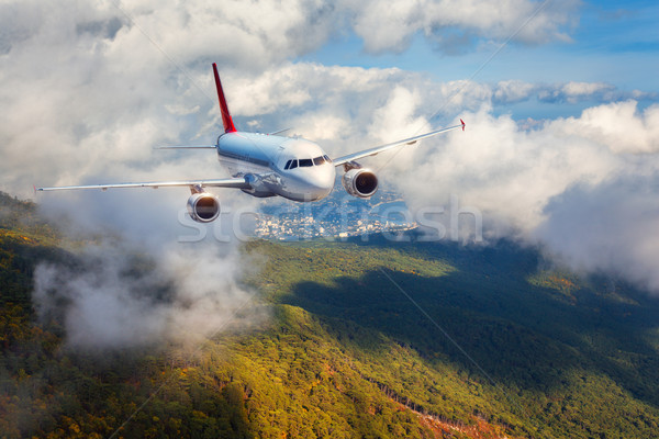 Airplane is flying in clouds over mountains with forest at sunse Stock photo © denbelitsky