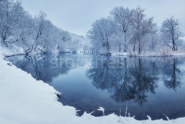 Landscape with snowy trees in winter forest Stock photo © denbelitsky