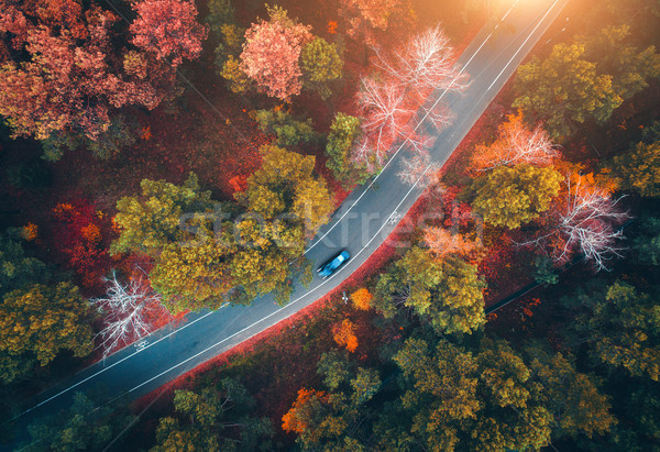Aerial view of road with blurred car in autumn forest Stock photo © denbelitsky
