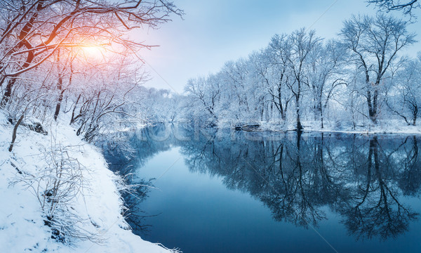 Winter forest on the river at sunset. Colorful landscape with sn Stock photo © denbelitsky