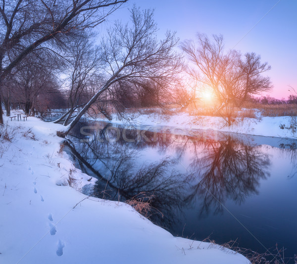 Winter landscape with trees reflected in river at sunset Stock photo © denbelitsky