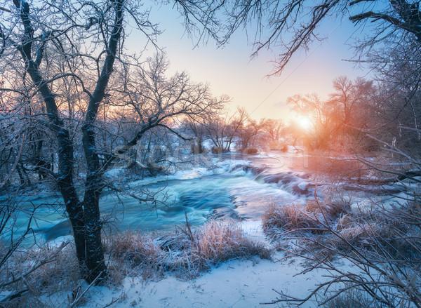 Inverno panorama alberi ghiaccio bella congelato Foto d'archivio © denbelitsky