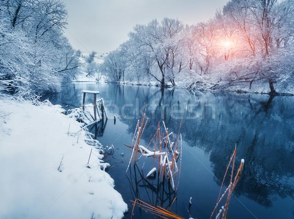 Panorama alberi inverno foresta fiume tramonto Foto d'archivio © denbelitsky
