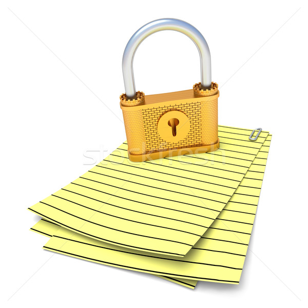 Document and Lock Stock photo © dengess