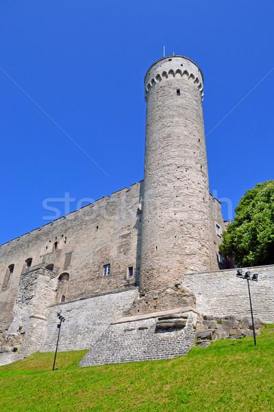 башни лет день Таллин Эстония здании Сток-фото © dengess