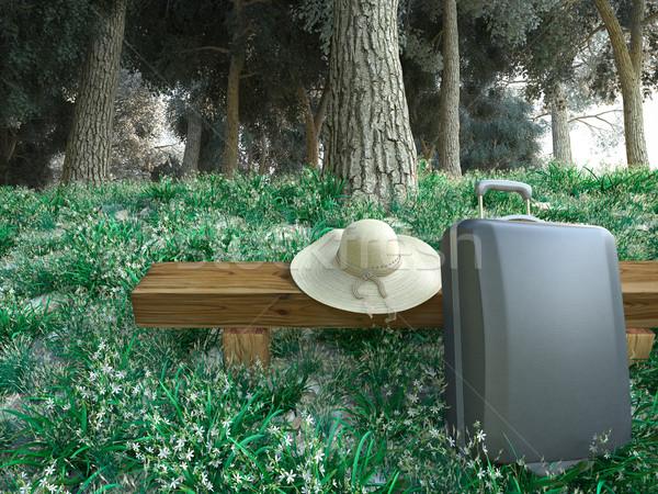 Seyahat çanta şapka turizm tatil Stok fotoğraf © denisgo