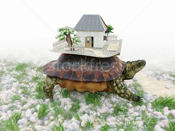 Turtle with toy house from paper real estate business concept photo Stock photo © denisgo