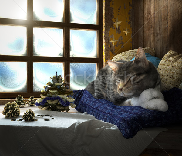 Sleeping cat on winter window background concept composition 3d render Stock photo © denisgo