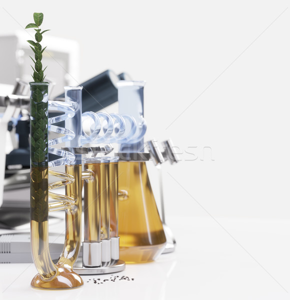 green plant in chemical laboratory science and technology concept background Stock photo © denisgo