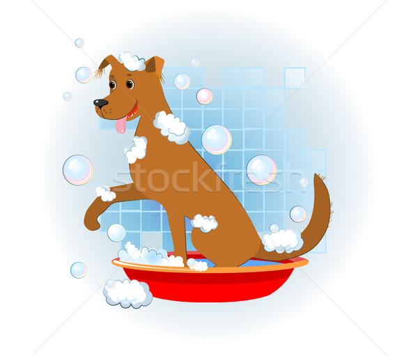 funny dog wash in bathroom Stock photo © denisgo