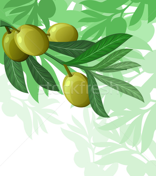 olive tree hanuka israel holiday backgroundolive tree hanuka israel holiday background Stock photo © denisgo