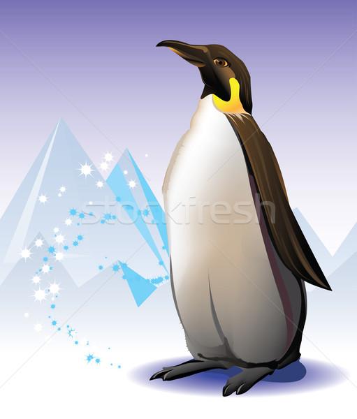 Pinguin ijsberg sneeuw hemel zee schoonheid Stockfoto © denisgo