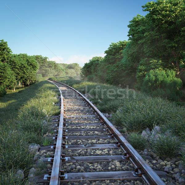 Demiryolu izlemek seyahat bulutlar mavi Stok fotoğraf © denisgo