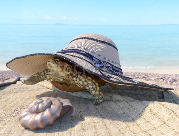 Ontspannen vakantie schildpad strand Stockfoto © denisgo