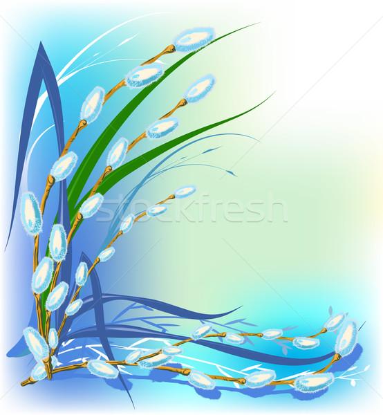 ива праздновать дерево весны природы лист Сток-фото © denisgo