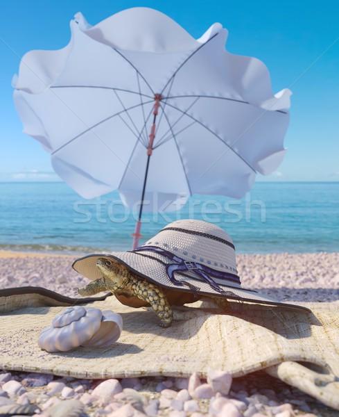 Relajante vacaciones tortuga playa espacio Foto stock © denisgo