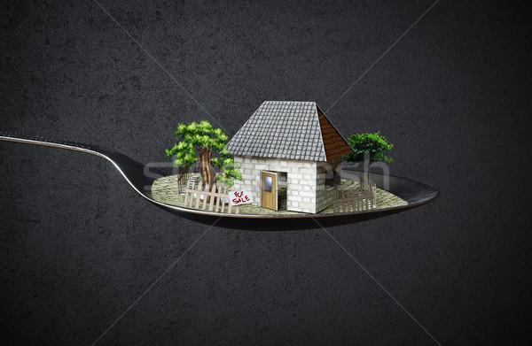 Foto stock: Casa · cuchara · inmobiliario · negocios · foto