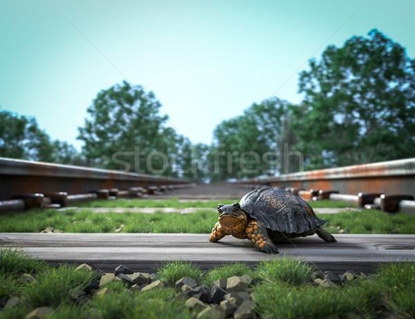 Ferrovia seguir tartaruga viajar nuvens Foto stock © denisgo
