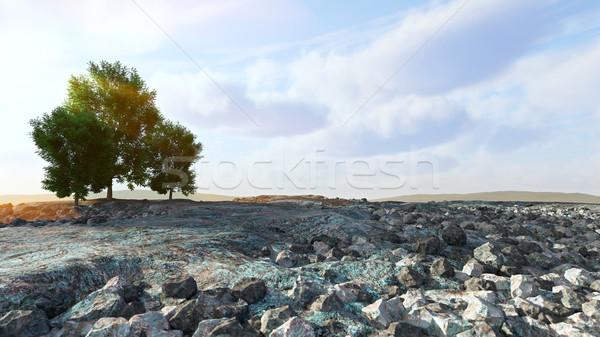 Woestijn landschap rotsen bomen boom wolken Stockfoto © denisgo