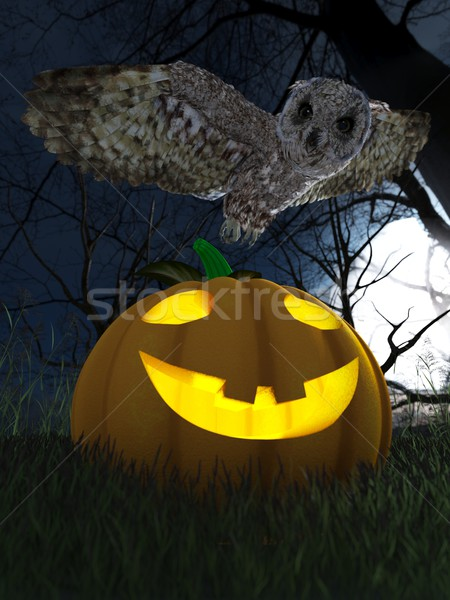 Halloween pumpkin and owl in night forest holiday background Stock photo © denisgo