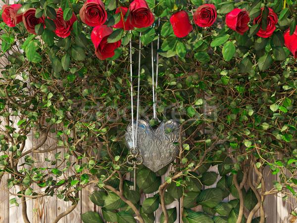 Rosas corações dia dos namorados casamento dia Foto stock © denisgo
