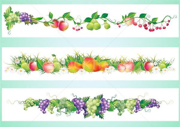 fruits diet border element Stock photo © denisgo