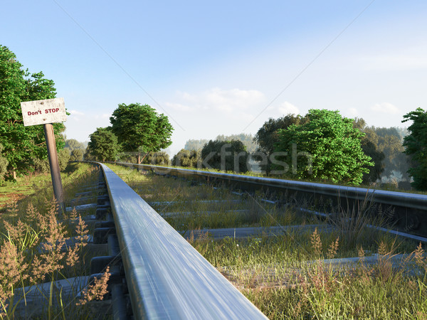 Ferrovia seguir viajar árvore pôr do sol Foto stock © denisgo