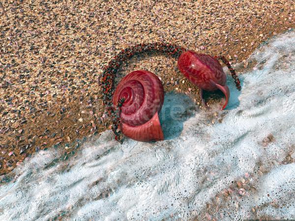 ビーチ 海 ウィンドウ 魚 水族館 テクスチャ ストックフォト © denisgo