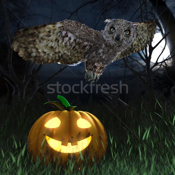 Cadılar bayramı kabak baykuş gece orman tatil ağaç Stok fotoğraf © denisgo
