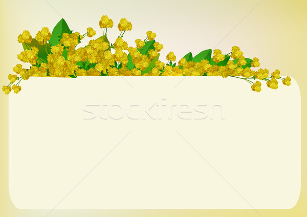 yellow flower background frame Stock photo © denisgo