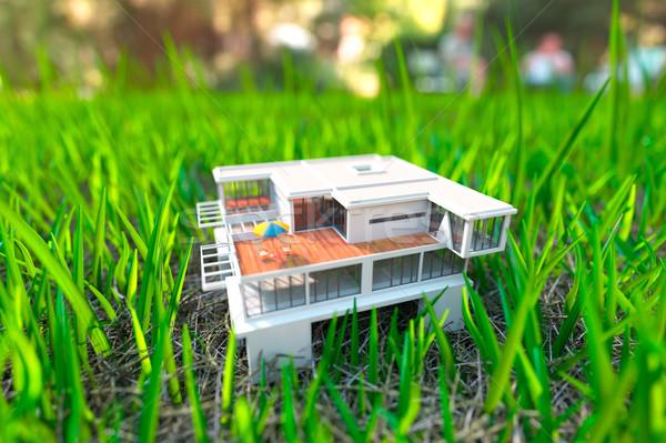 Stock fotó: Ház · zöld · fű · közelkép · kilátás · üzlet · papír