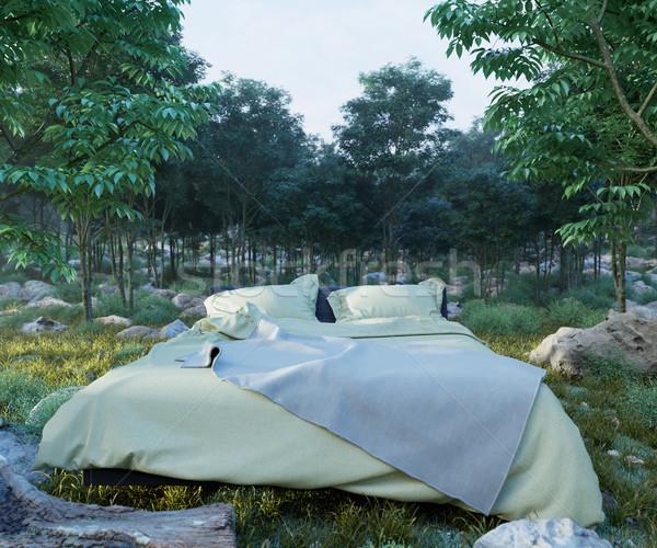 Tatil yatak akşam orman fotoğraf çim Stok fotoğraf © denisgo