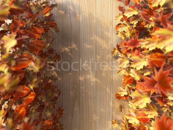 Hojas de otoño textura madera naturaleza fondo Foto stock © denisgo