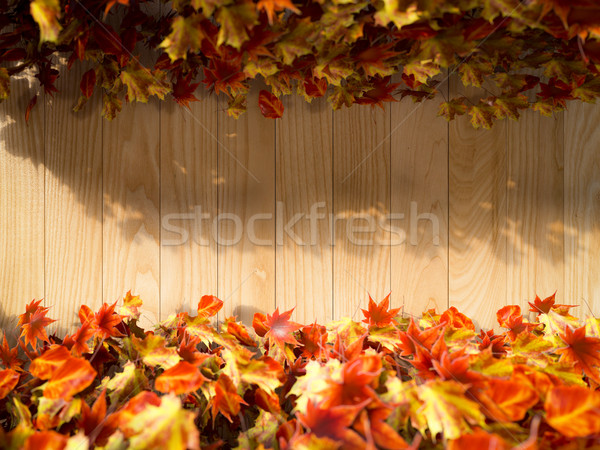 autumn leaves on the wooden background composition Stock photo © denisgo