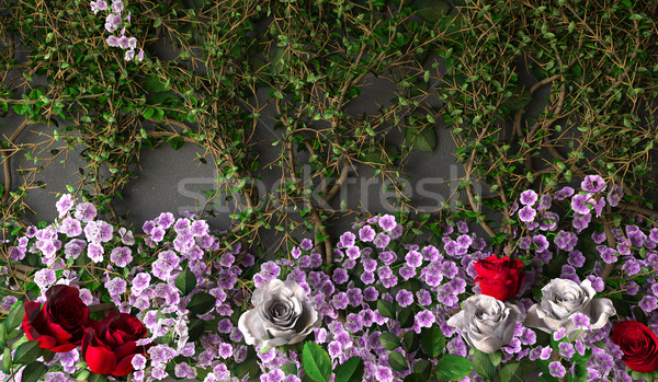 flowers rose holiday background on gray wall Stock photo © denisgo