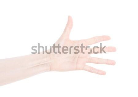 Gyönyörű női nő kéz kő zsemle Stock fotó © DenisMArt